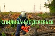 Спиливание деревьев Чертовицы, спилить дерево в Чертовицах Воронеж Воронеж