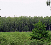 Продаю земельный участок 53 сотки Москва