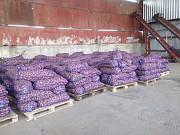 Картофель оптом от производеителя Краснодар