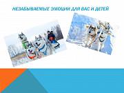 Проводы зимы в хаски-центре Пермь