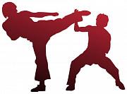 Karate kyokushinkai детям у вас дома в Измайлово. Москва