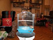Клетка для небольших птиц Москва