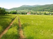 Шикарный участок возле леса в селе Гончарное Севастополь