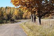 Продам земельный участок в поселке Новорижские дачи Истра