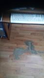 Коврик защитный под офисное кресло Волгоград