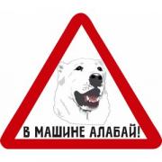 Наклейки на авто в Краснодаре Краснодар