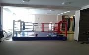 Боксерские ринги от «SportPanda» Краснодар