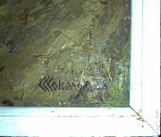 Картина маслом «Весенняя зелень», художник С.Соколов Орехово-Зуево