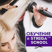 Обучение парикмахерскому искусству в STRIGA School Краснодар