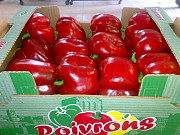 Поставка овощей, фруктов, грибов, орехов и зелени. Бесплатная доставка Москва