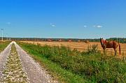 Продается участок 7 соток в коттеджном поселке Новое Боково Ногинск