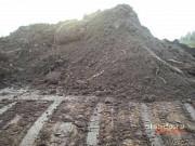 Доставка песка, щебня, земли, навоза, дров, Кингисепп Кингисепп