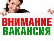 Помощник руководителя в интернет магазин Байкалово