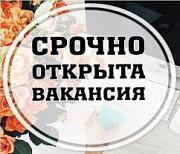 Специалист по рекламе в интернете Димитровград