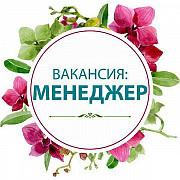 Менеджер-консультант (удаленно) Кызыл