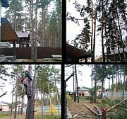 Спиливание деревьев Семилуки Семилуки