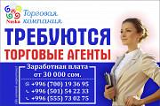 Требуются Торговые агенты в г.Бишкек Москва