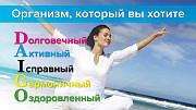 Как защититься от вирусов с помощью Дайго Санкт-Петербург