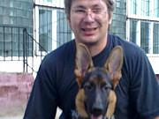 Профессиональная дрессировка собак Москва