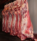 Мясо говядины Казань