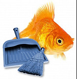 Обслуживание аквариума Тюмень