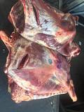 Мясо говядина Тюмень