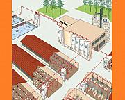 Оборудование для промышленного свиноводства на свинофермы Москва