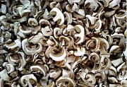 Сухие белые грибы Барнаул