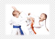 Каратэ Kyokushinkai детям у вас дома. Москва