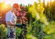 Новая Усмань садовник услуги садовников в Новой Усмани Новая Усмань