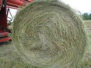 Хорошее сено в рулонах луговое пойменное Чебоксары