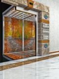 Пассажирские лифты из серии Классика Краснодар