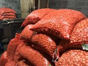 Лук севок от производителя Чувашии Чебоксары