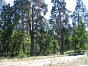 Продам в рассрочку (без участия банка) земли сельхозназначения Бобров