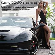 Купить ОСАГО онлайн Владимир Владимир