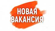 Требуются менеджер (удаленная вакансия). Москва
