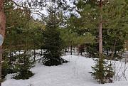 Участки у леса Ступино