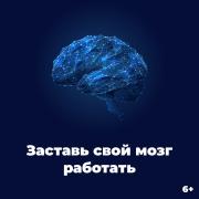 Онлайн-курс. Мозг – суперсила, которую Вы не используете Санкт-Петербург
