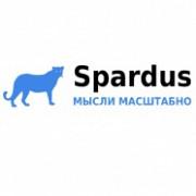 Консалтинг, оптимизация и продвижение сайтов - Spardus Москва