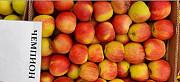 Яблоки оптом напрямую от Крымского производителя. Нижний Новгород