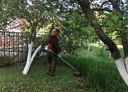 Спил кустов и спиливание деревьев в городе Медовка и спилим по области в Медовке Воронеж