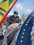 Продаю экипаж для лошади Челябинск