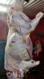 Мясо-говядина Сургут