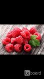 Обмен бартер на ягоды малина клубника смородина клюква вишня на наши товары топ мода стиль Москва