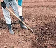 Вскапывание Медовка, мы вскапываем огород мотоблоком в Медовке в Воронежской области Воронеж
