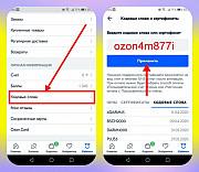 Промокод Озон ozon4m877i баллы на счет Сыктывкар