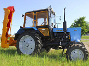 Газонокосилка роторная Рамонь, арендовать роторные газонокосилки в Рамони Рамонь