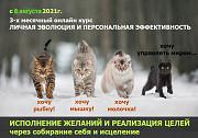 Онлайн-курс Личной Эволюции и Персональной Эффективности Москва