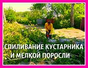 Спиливаем деревья в городе Масловка, мы спилим дерево в Масловке, спиливание Масловка