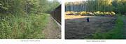 Расчистим дачный участок от зарослей и поросли Масловка, а также в Воронежской области в Масловке Масловка